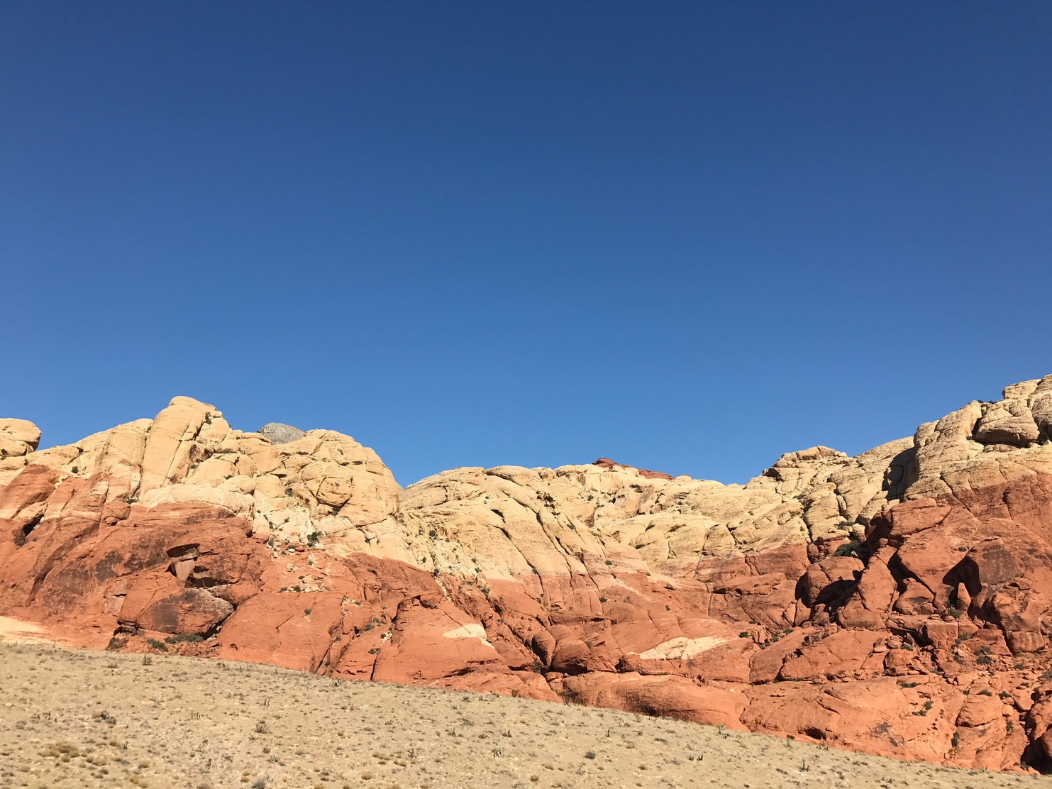 Hike or Trail Run White Rock to Willow Springs