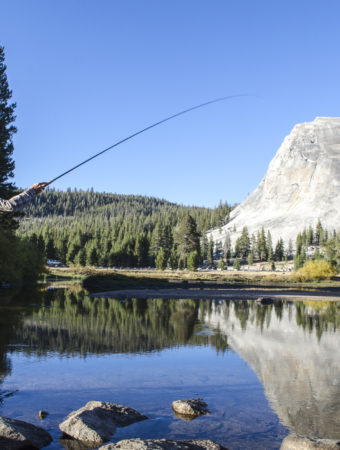 A young man fly-fishes in Tuolumne Meadows, California.