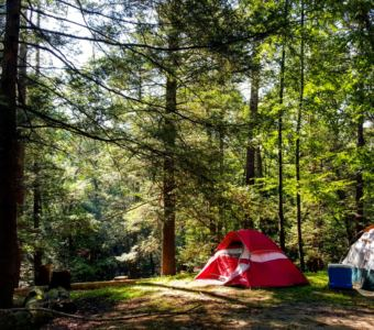 Camp at Kittatinny Campground